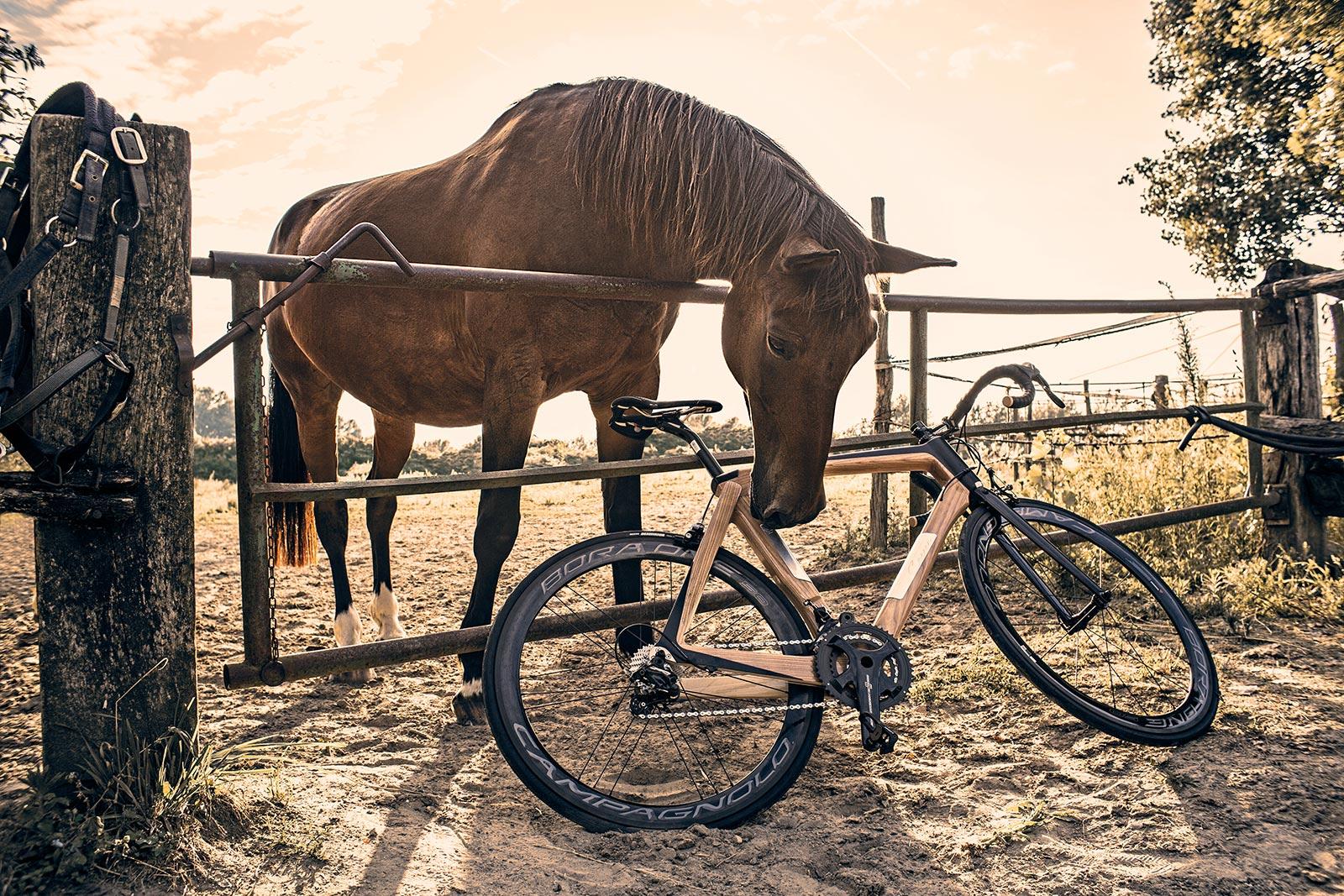 Bike sportiva Maranello di carrerBikes